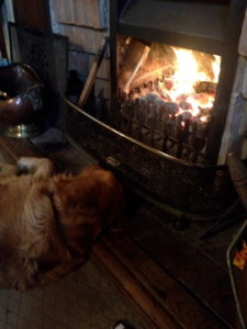 Ben cuddles the fire